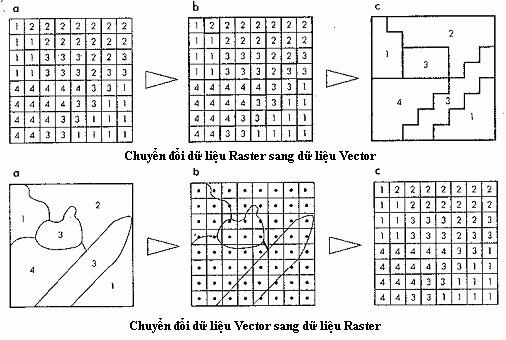 Chuyển đổi Vector sang Raster