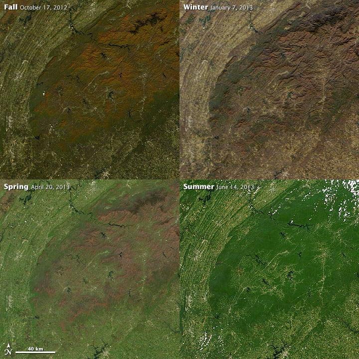 Hình ảnh khu rừng bao phủ dãy núi Great Smoky ở Đông Nam Hoa Kỳ thay đổi màu sắc từ nâu sang xanh lá cây, từ cam sang nâu khi thay đổi theo mùa (Hình ảnh từ NASA)