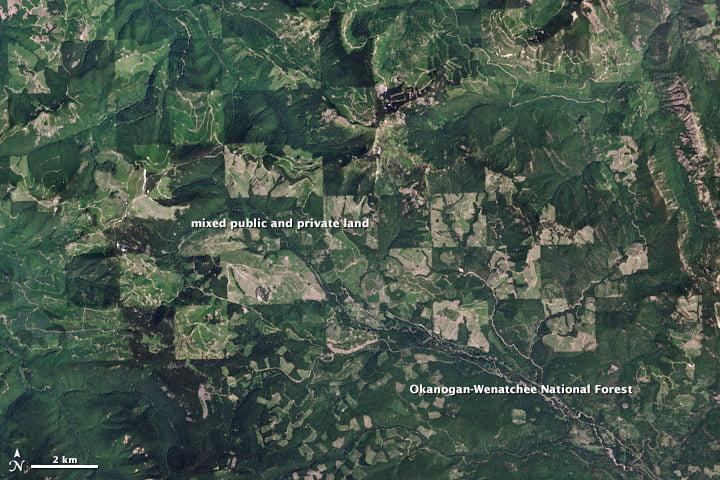Ảnh chụp bản đồ vệ tinh về việc bảo tồn và sử dụng đất xác định diện tích rừng ở Mỹ
