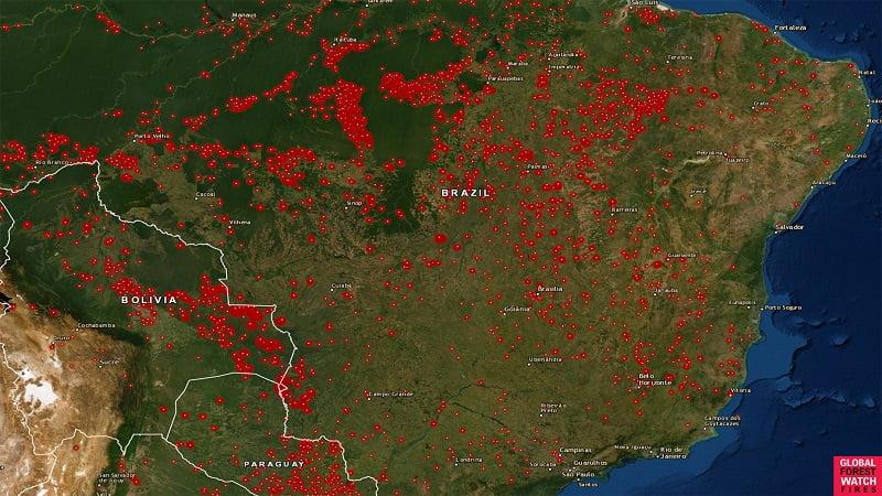 Hệ thống cảnh báo và quản lý cháy rừng trên nền bản đồ GIS